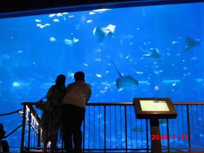 ENJOY旅行者必見! シンガポール観光                  ③セントーサ島