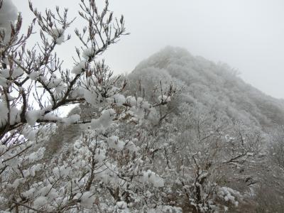 普賢岳の裏表 佐賀のお伊勢さん大祭