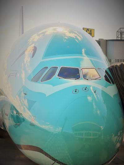 ANA-4 NH183便 ホノルル11:30-離陸⇒成田へ ☆エアバスA380-FLYING HONU-で