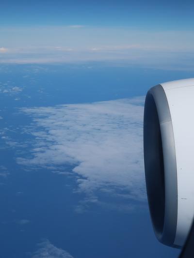 ANA-5 NH183便 東京/成田へ 8時間15分 ☆飛行順調-高度7m?誤表示-機内食2回