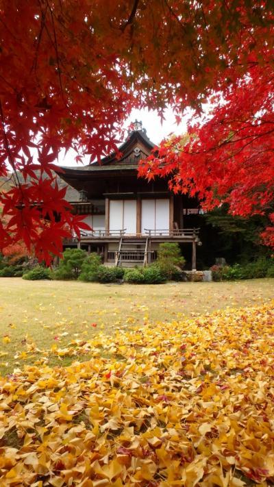 京都紅葉八景(7)天龍寺、大河内山荘庭園、渡月橋