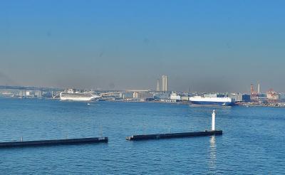 ダイヤモンドプリンセスを見に横浜港シンボルタワーまで 苫小牧八戸間フェリーSILVERQUEEN自衛隊を支援
