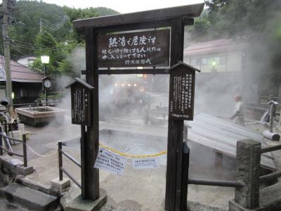 2019年9月17日:ダムカード収集-43 & 関東道の駅SR 番外編8 (その5) 新設の道の駅に古の外湯 野沢温泉を満喫