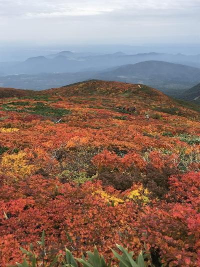 ひと足早い紅葉登山 栗駒山