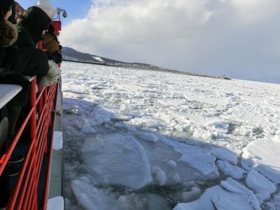 流氷を訪ねて~ガリンコ号とおーろら号