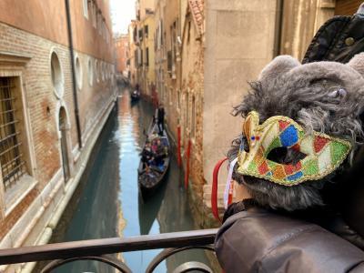 2020プレカーニバルのベネチアとおまけのベローナ:3仮面をつけたら気分はマスカレード?!