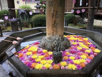 2020年西国三十三所巡礼の旅③ 大阪から奈良と京都へ 雨の巡礼 9番10番11番札所