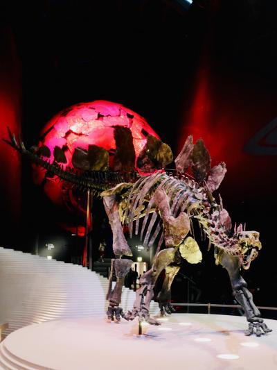 年末年始らしい事もせずロンドンで博物館・美術館漬け(6)~ららら科学の自然史博物館