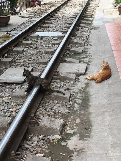 オタじゃなくとも鉄道にはまる夏ハノイ①