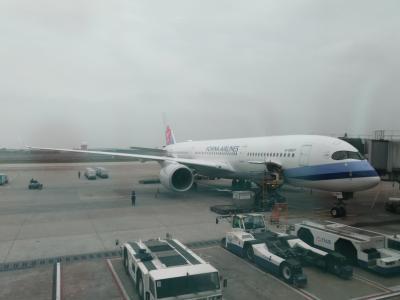 2020年2月 台北3泊4日⑧ 最終日 帰国便も空席だらけ