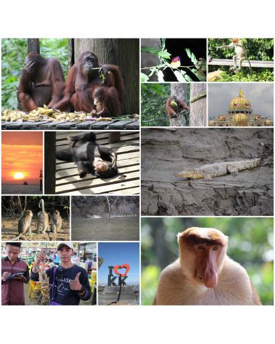 マレーシア・ボルネオ島のジャングルを訪ねる旅①日本出国からクアラルンプールへ