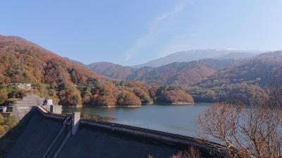 有峰林道の紅葉