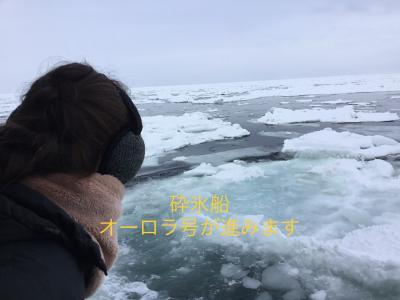 初めてのツアーで「流氷オーロラ号」