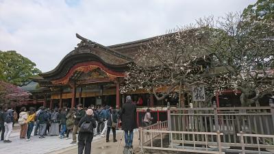 福岡 神社巡り