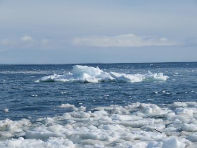 北海道で流氷を見てきました。