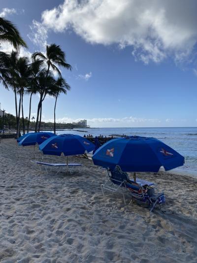 おひとり様ハワイ 再び 2020年2月 ④3日目