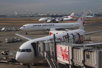 JL455便、羽田→徳島、バレンタインデーのフライト、JAL DREAM EXPRESS90。