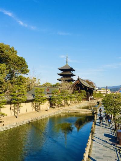 冬の京都~節分祭・石庭・梅(3)