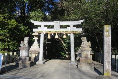 2020新春、ちらほら咲いた枝垂れ梅(4/5):1月31日(4):針名神社(1):鳥居、狛犬、神門、拝殿、稲荷社、赤鳥居