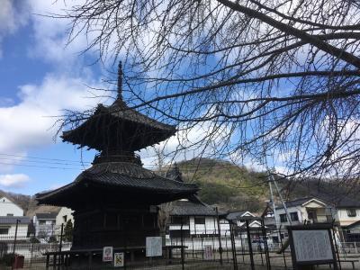 岡山☆愛犬と多宝塔のある公園と菜の花を見に行きました