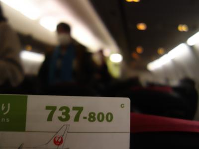 Boeing737-800 に乗りました。HND-NGO JL209。あっという間に名古屋に着きました。