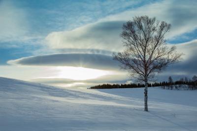 厳冬期の美瑛を巡る撮影行