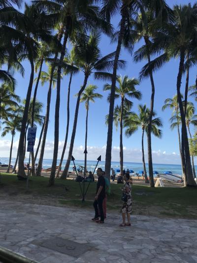 避寒のつもりで行ったハワイ1