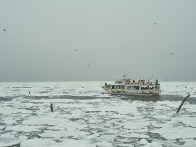 冬の北海道 さいはて野鳥紀行 羅臼流氷クルーズ