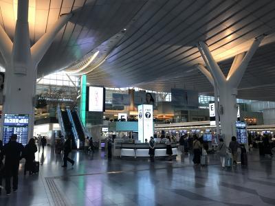 2020ニュージーランド南島周遊①~シンガポール経由往路(シンガポール航空・ニュージーランド航空)