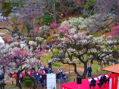 大倉山梅林と菊名のイタリアン。東急東横線に乗って春を探しに。