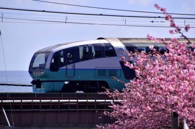ありがとうスーパービュー踊り子号、引退間近な251系と伊豆の河津桜を見に訪れてみた(片瀬白田編)