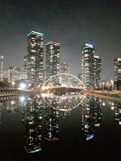 今年度3回目のついてない☆6日目はソウルで撃沈