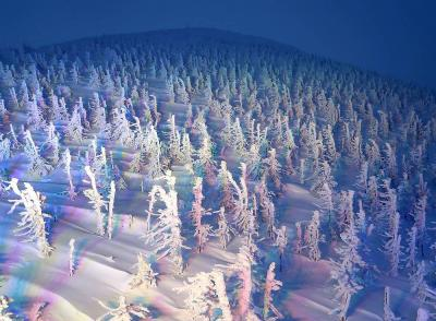団塊夫婦のスキー&絶景の旅・2020ー(4)樹氷ライトアップも見れた蔵王温泉スキー場
