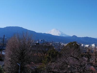 2・23日冨士山の日