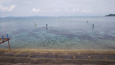 春を探して沖縄へ 2020冬の終わり