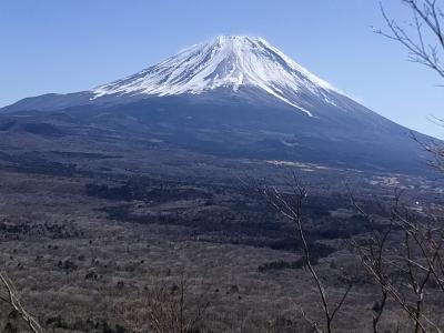 富士山の日に富士山を見よう!竜ケ岳登山
