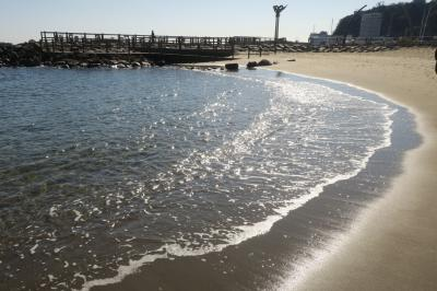 熱海の旅、突然に。サンビーチ~来宮神社