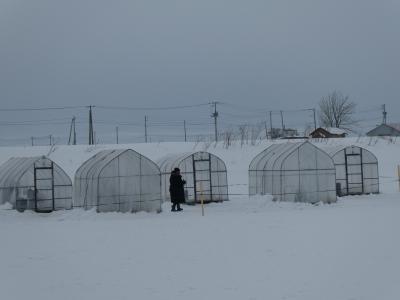 ワカサギ釣りとさっぽろ雪まつり