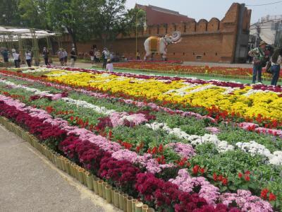2020・2 チェンマイ花祭り・・フルコース・・(Ⅴ)ターペー・ゲート広場