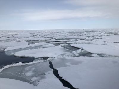 オホーツクの流氷を砕氷船と観光列車から眺めてきました。
