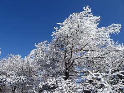 甲信の山旅♪富士見台高原・南沢山&滝子山・笹子雁ヶ腹摺山