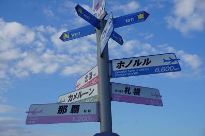 """関西旅行記~2019 大阪・泉佐野市~""""関西国際空港"""""""