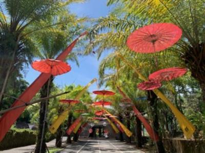 バリ島にいながら、インドネシア一周の旅!