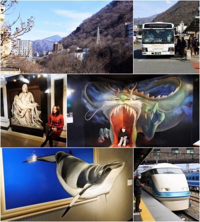 鬼怒川温泉の旅 2 (2020.02.19~20)
