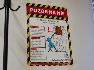 【2020海外】2泊4日でチェコ&ブルガリア #03 ~プラハ編 到着2時間で財布を盗まれ路頭に迷う~