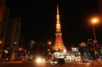 あら偶然。223(富士山)の日に東京タワーから富士山を眺めた日