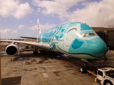 ハワイオアフ島旅行記2020~6日目帰国日~ホヌ!!嵐ジェットにも遭遇~