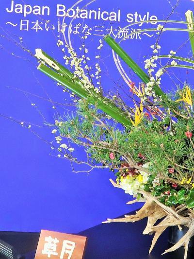 世界らん展-9 日本いけばな 三大流派  競演 ☆「池坊」「草月流」「小原流」を比較
