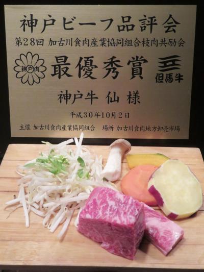 姫路・神戸レッサーパンダ遠征2020(3)神戸グルメと品揃え豊富な姫セン・神戸どうぶつ王国でのショッピング・みやげ&動物園いろいろ