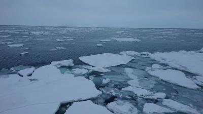 おやじの一人旅・北海道 流氷を追って5日間 2020